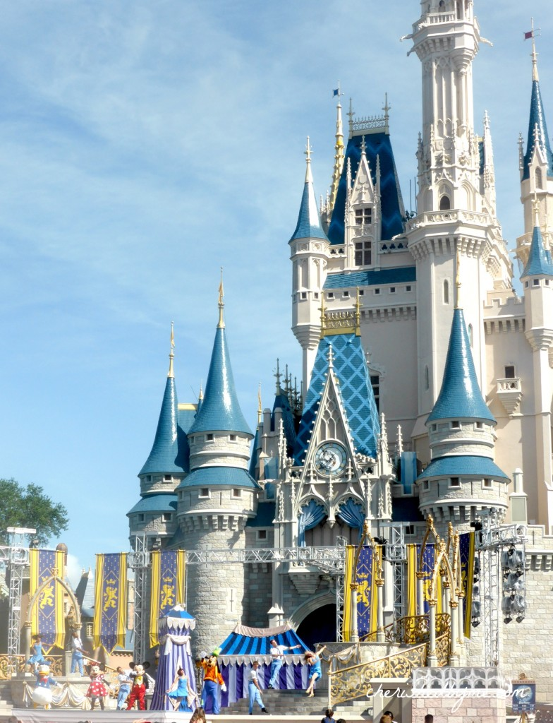The magnificant Cinderella Castle- Walt Disney World- Cherished By Me