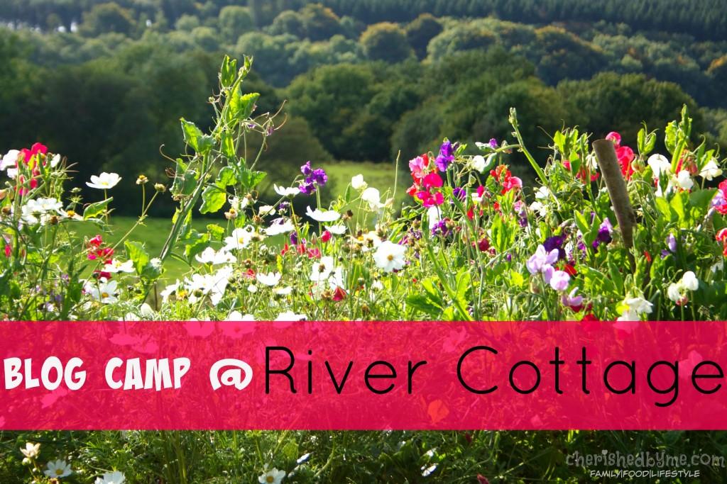 Blog Camp at River Cottage