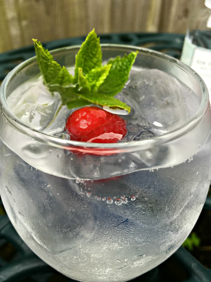 A classic gin and tonic using Pinkster premium brand gin- cherishedbyme.com